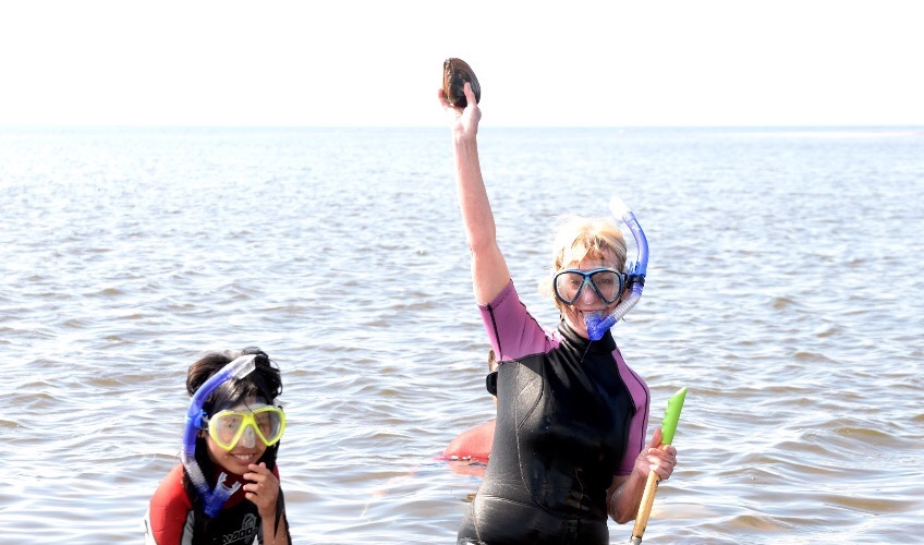 Dig In! PEI's Bar Clamming Experience