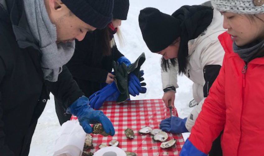 Tranquility Cove's Ice Fishing for Oysters