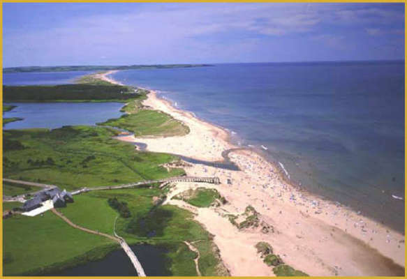 Cavendish Beach for Families Extra Fun