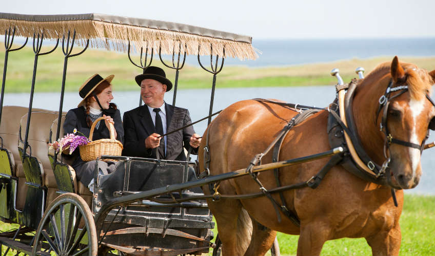 One-hour Romantic carriage ride for two