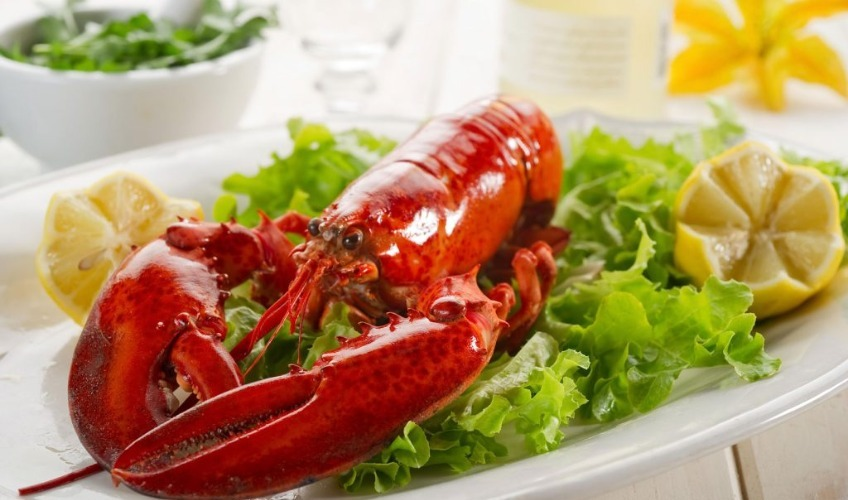 Love and Lobster
