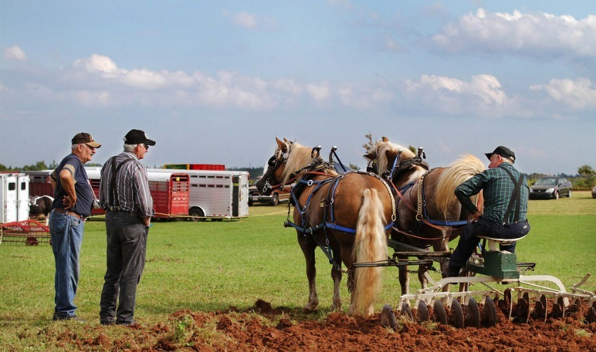 PEI Provincial Plowing Match & Agricultural Fair