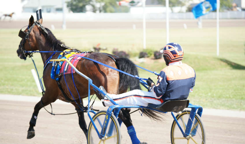 Harness Racing at Red Shores Summerside