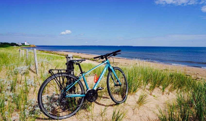 MacQueen's Bike Shop & Island Tours - Local Cycling Specialists