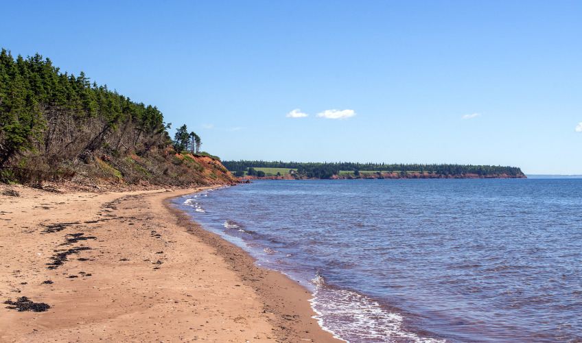 Sally's Beach Provincial Day Park