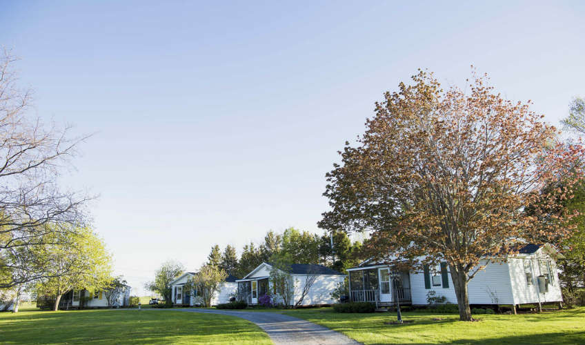 Birches Housekeeping Cottages (The)