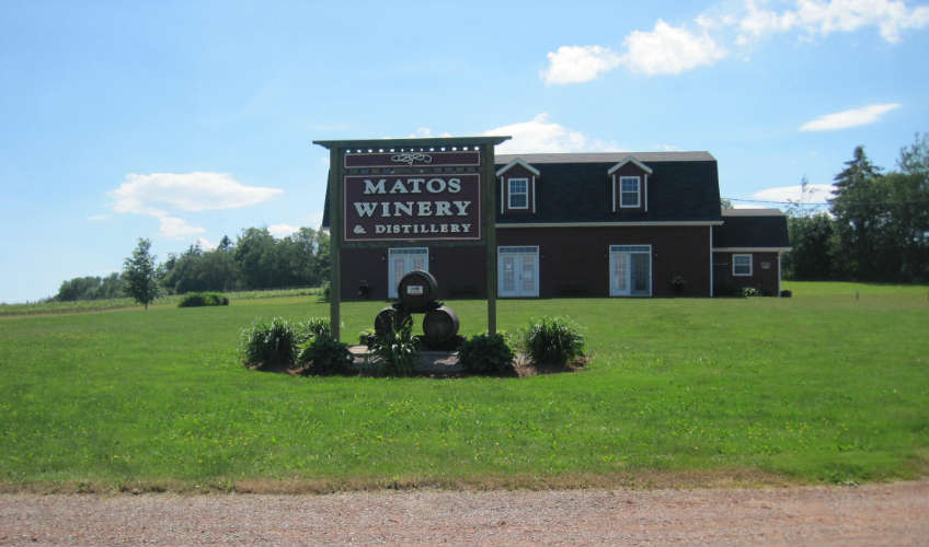 Matos Winery & Distillery