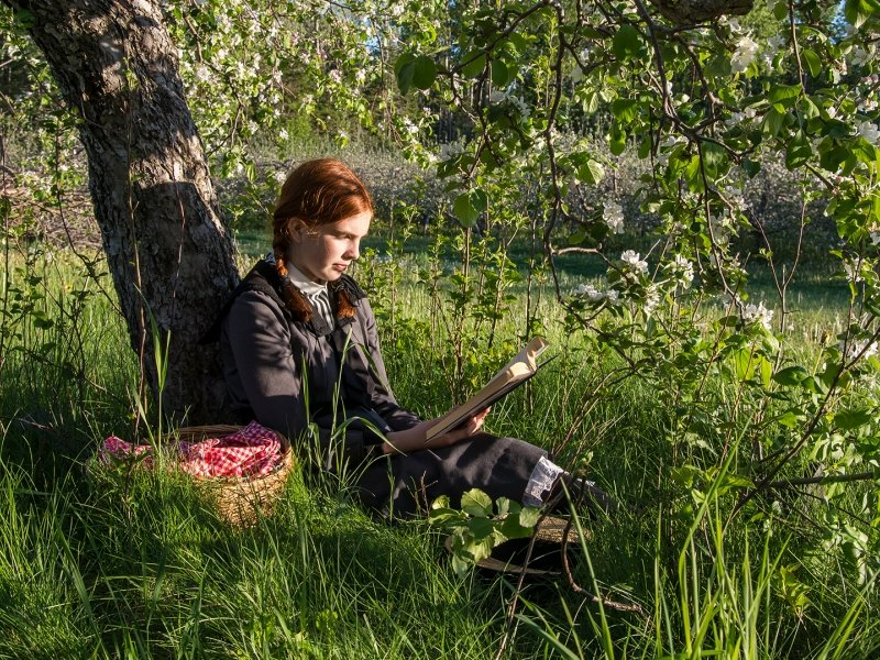 Anne of Green Gables, reading, grass