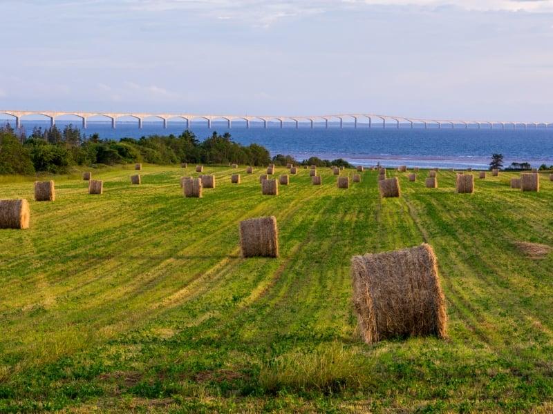 Confederation Bridge, field, hay, hay bales, sky